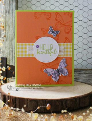 RR Butterfly Gala